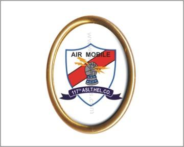 117th Air Mobile