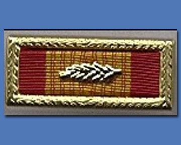 Vietnam Unit Citation